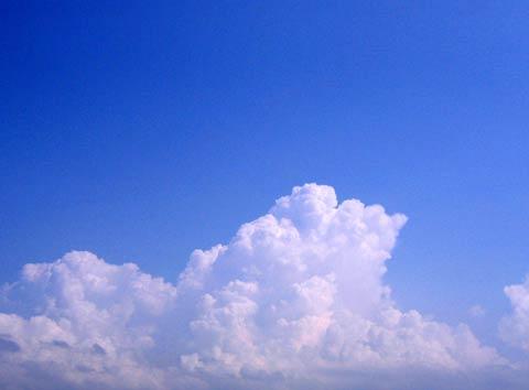 20090214a48b.jpg