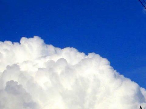 20090214a68b.jpg